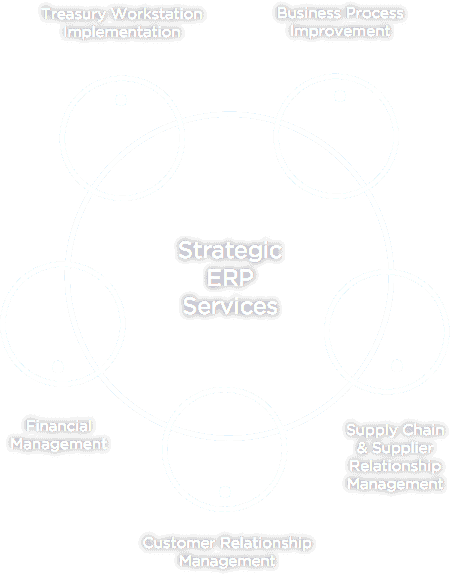 Strategic ERP Services