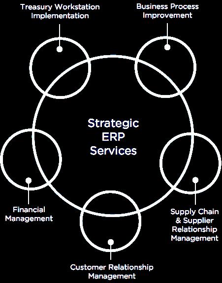 Strategic ERP Services